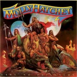 flirtin with disaster molly hatchet chords